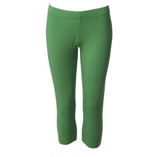 Leggings du Milde short dark green